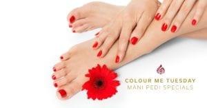 Colour Me Tuesday Manicure Pedicure Specials Johannesburg at Royal Orchid Thai Spa & Hair Salon - Colour Me Tuesday